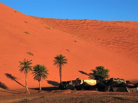 Les Kasbahs centenaires et le Désert du Sahara