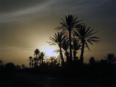 Les villes impériales et le désert du Sahara